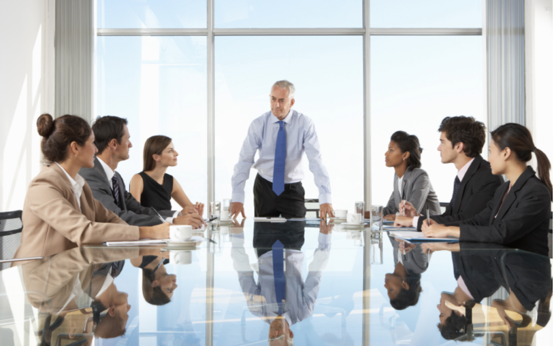 CEO Role In Business Excellence Implementation